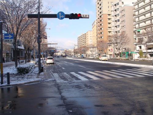 雪化粧_f0201286_17135918.jpg