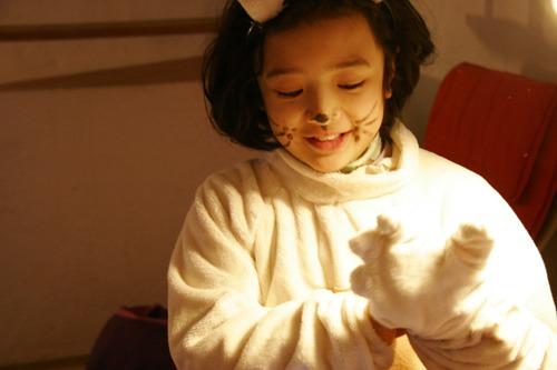 猫ちゃん_f0106597_2543773.jpg