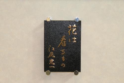 世界らん展日本大賞2012_e0123104_8525791.jpg