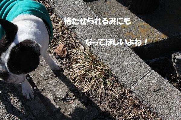 f0186509_2212634.jpg