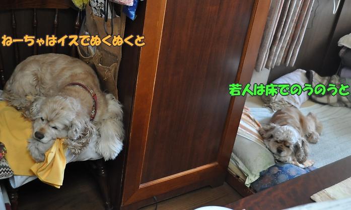 b0067012_1230633.jpg