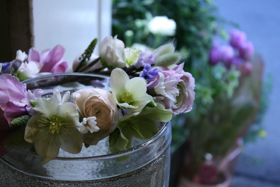 可憐な春のクラウン_d0005824_8354753.jpg
