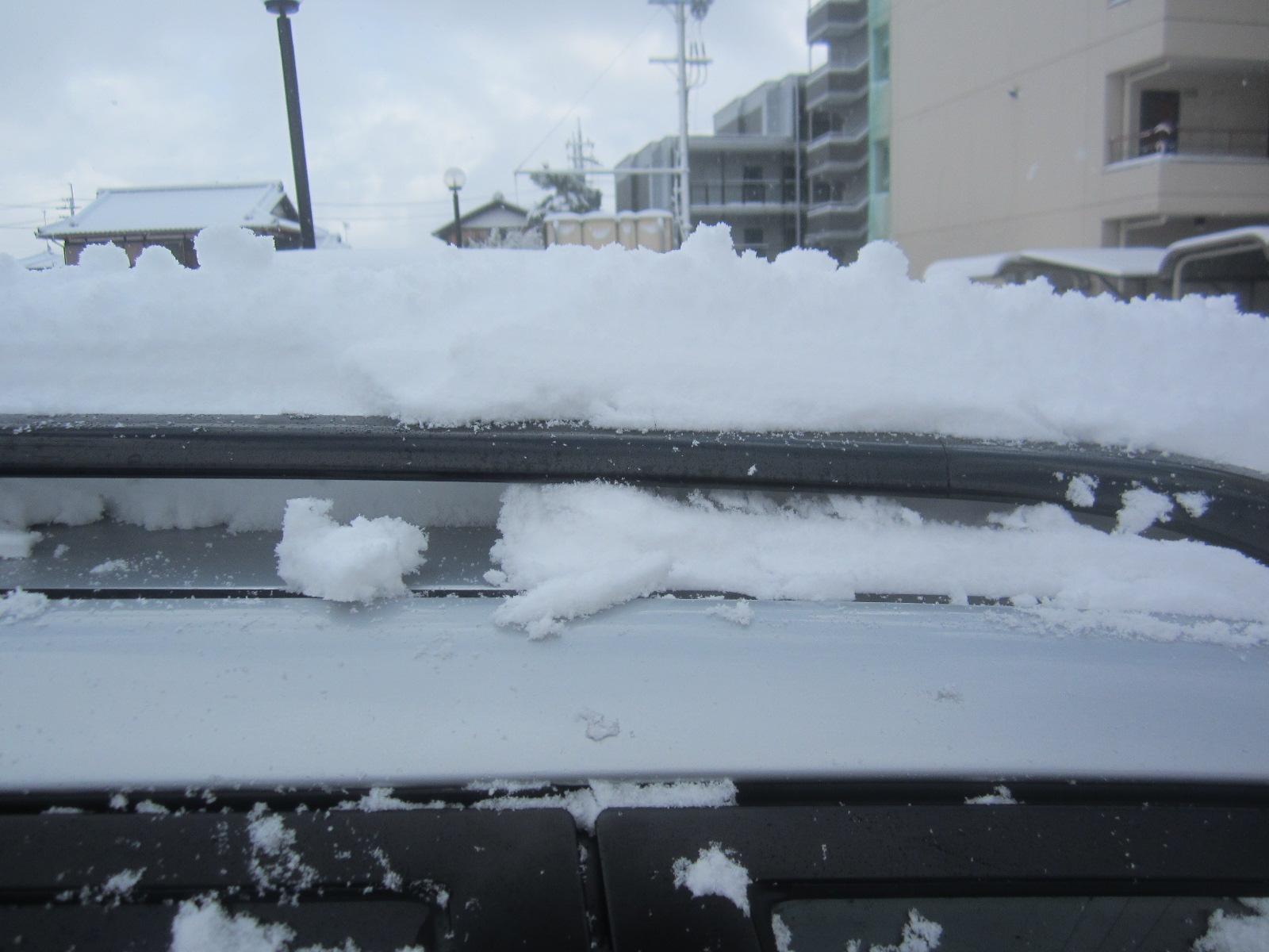 雪降りました_c0088525_1283347.jpg