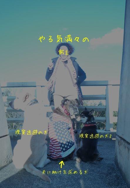 f0177261_13221451.jpg