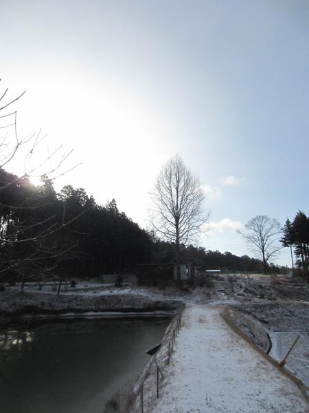 雪の朝_d0231263_051726.jpg
