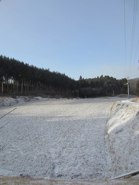 雪の朝_d0231263_053263.jpg