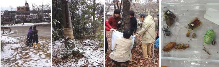 元気を見ました「いのちの森調査」_e0090670_0101343.jpg
