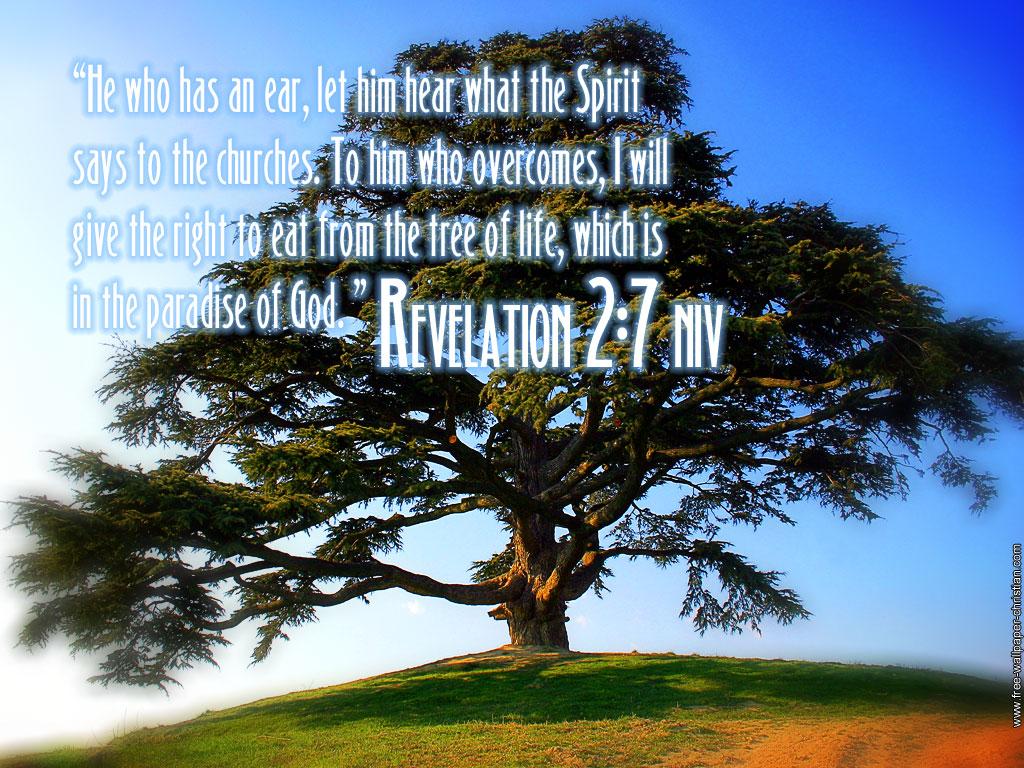 2月19日民数記31-33章『神の許容と信仰による交渉』_d0155777_0284118.jpg