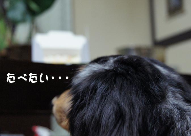 元祖帯広sweets_f0195891_21534729.jpg