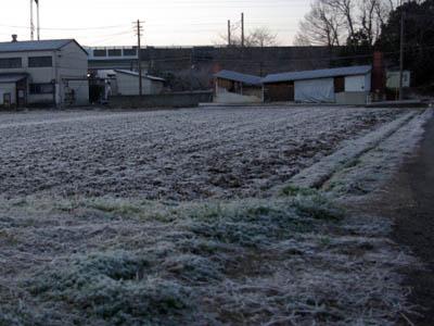 寒い朝!_c0081499_115442100.jpg