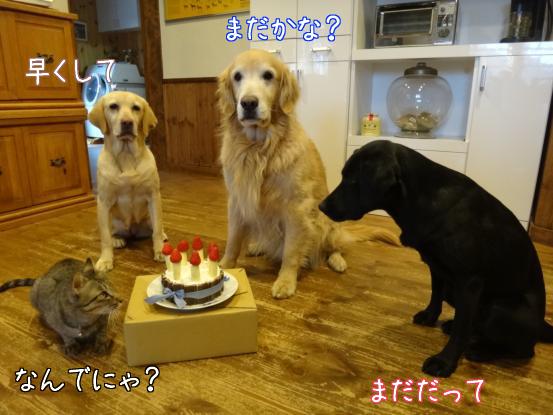 みんなの誕生日_f0064906_1848121.jpg