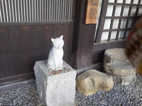 猫バカの理由_a0099131_2350414.jpg