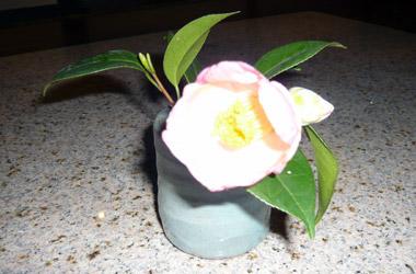 うすーいピンクの椿_c0237135_19102996.jpg