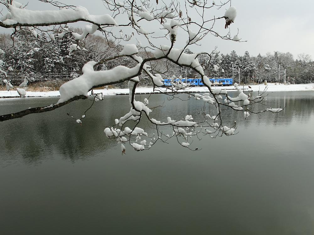 池の辺りは_d0226336_0374214.jpg
