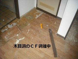 部分施行と・・研究品他_f0031037_185592.jpg