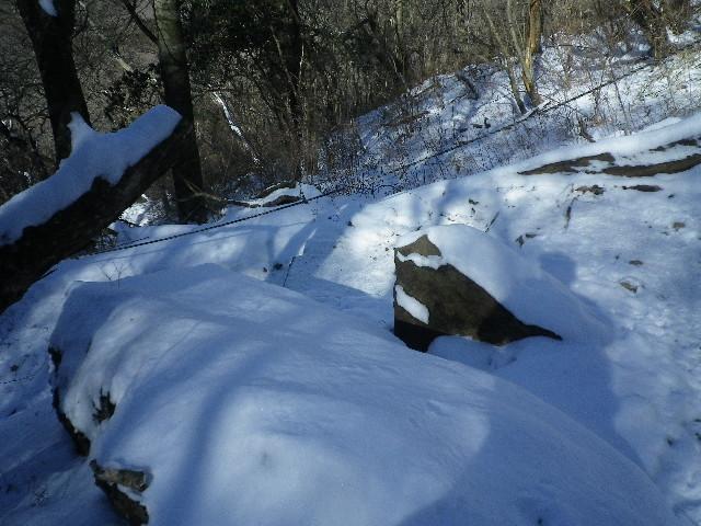 雪山ハイキング。。?_d0157745_1942149.jpg