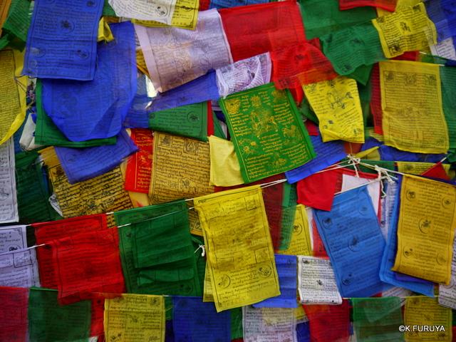 インド旅行記 9  仏教の聖地 サルナートその1_a0092659_22303194.jpg