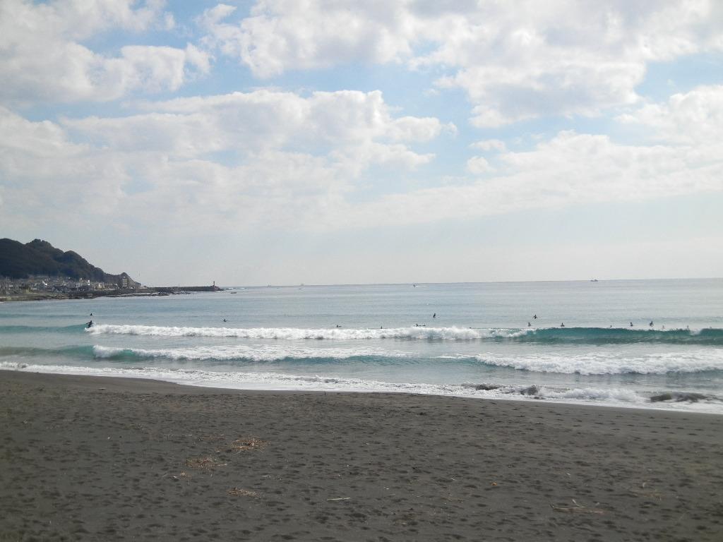 2012年2月20日(月)冬のサーフィンと花の絵!_f0060461_124047.jpg