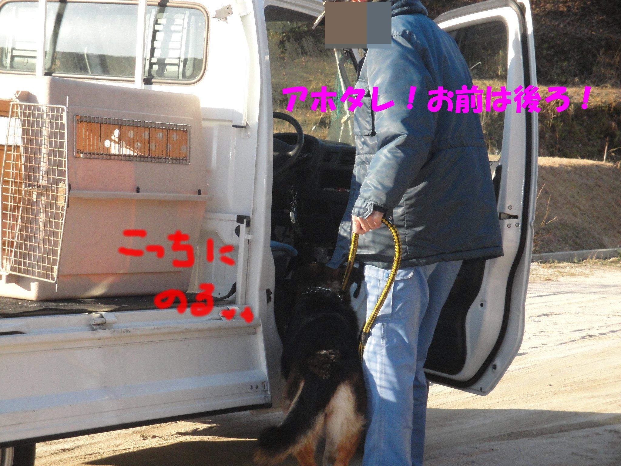 b0113663_97036.jpg