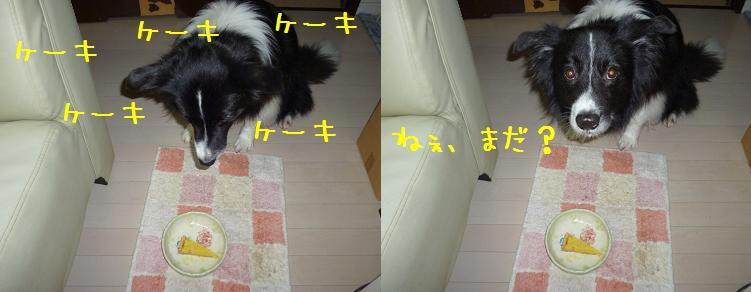 b0239071_22433976.jpg
