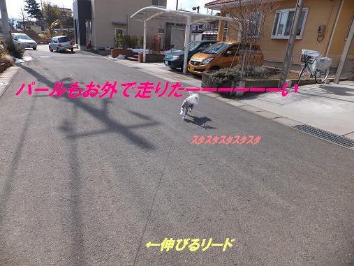 f0179203_17444047.jpg
