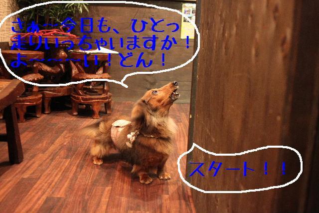 b0130018_14212089.jpg