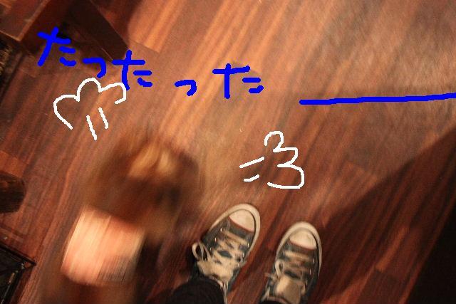 b0130018_14212652.jpg