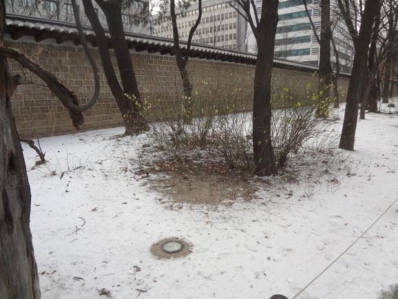 2011年12月ソウル~第24章~_d0219834_22152818.jpg