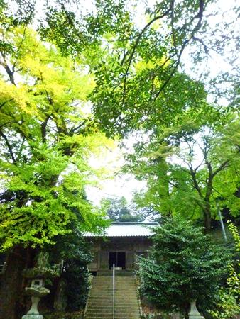 雷神社・盤座と記紀にはない歴史の記録_c0222861_17454486.jpg