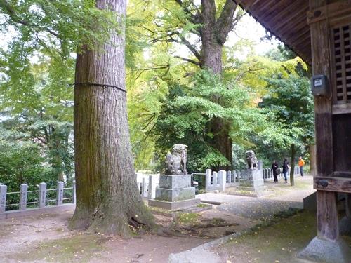 雷神社・盤座と記紀にはない歴史の記録_c0222861_17462994.jpg