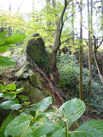 雷神社・盤座と記紀にはない歴史の記録_c0222861_17512912.jpg