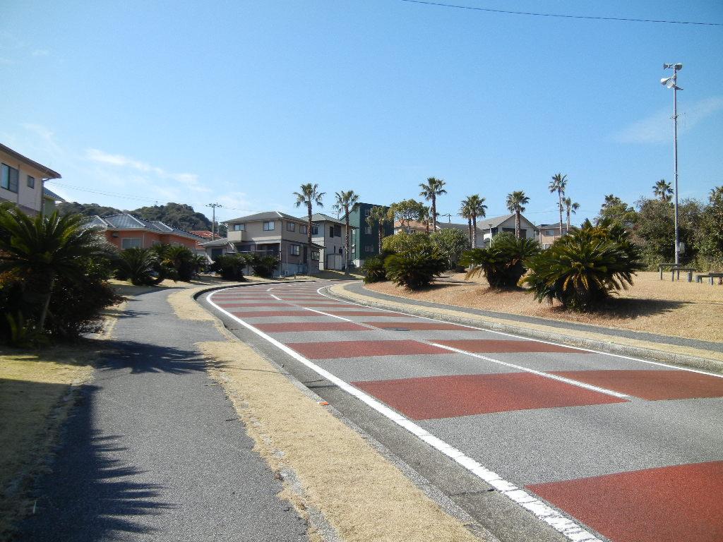 2012年2月21日(火)海までお散歩とこころちゃんが・・・!_f0060461_1330374.jpg
