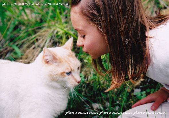ネコの日☆_b0164803_10452667.jpg