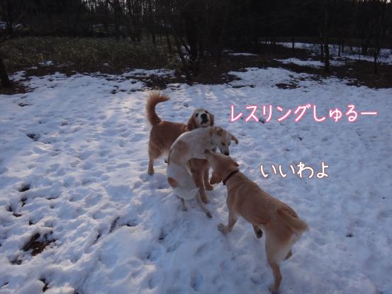 叔父さん五郎_f0064906_18215738.jpg