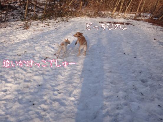 叔父さん五郎_f0064906_18241482.jpg