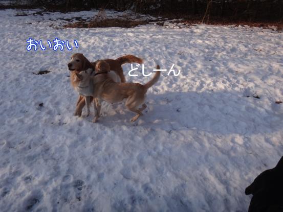 叔父さん五郎_f0064906_18253149.jpg