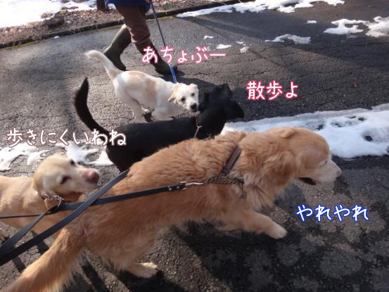 叔父さん五郎_f0064906_1829397.jpg