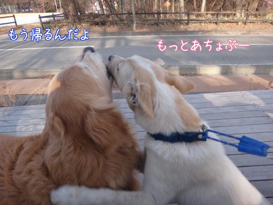 叔父さん五郎_f0064906_18321149.jpg