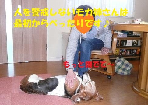 f0121712_872261.jpg