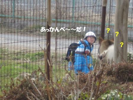 f0143123_19533266.jpg