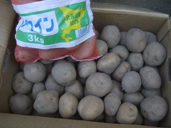 ソロソロジャガイモの準備開始...._b0137932_1850361.jpg