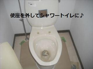 f0031037_218262.jpg