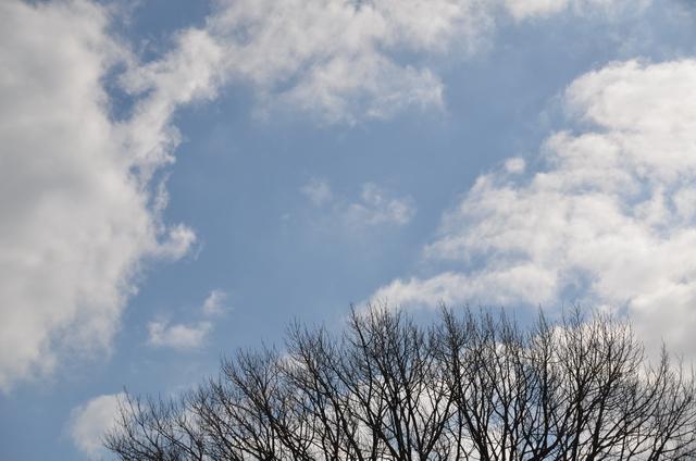 空の広さ_b0146751_22393610.jpg