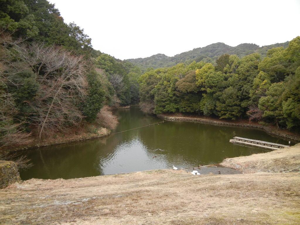 2012年2月22日(水)ブルーベリーヒル散歩とキョン!_f0060461_10164046.jpg