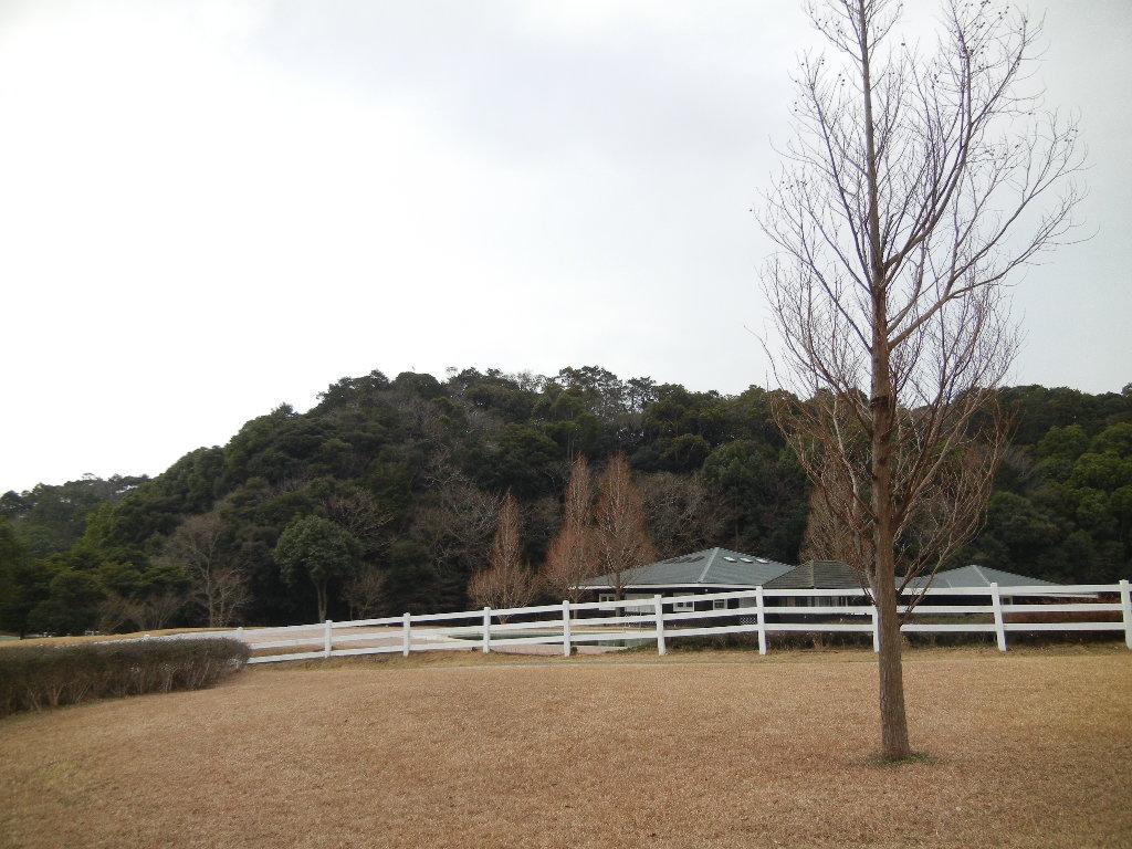 2012年2月22日(水)ブルーベリーヒル散歩とキョン!_f0060461_10205635.jpg