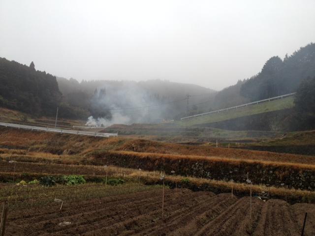 わわわあ長崎は今日も雨~だったみたいな_a0077071_15562041.jpg