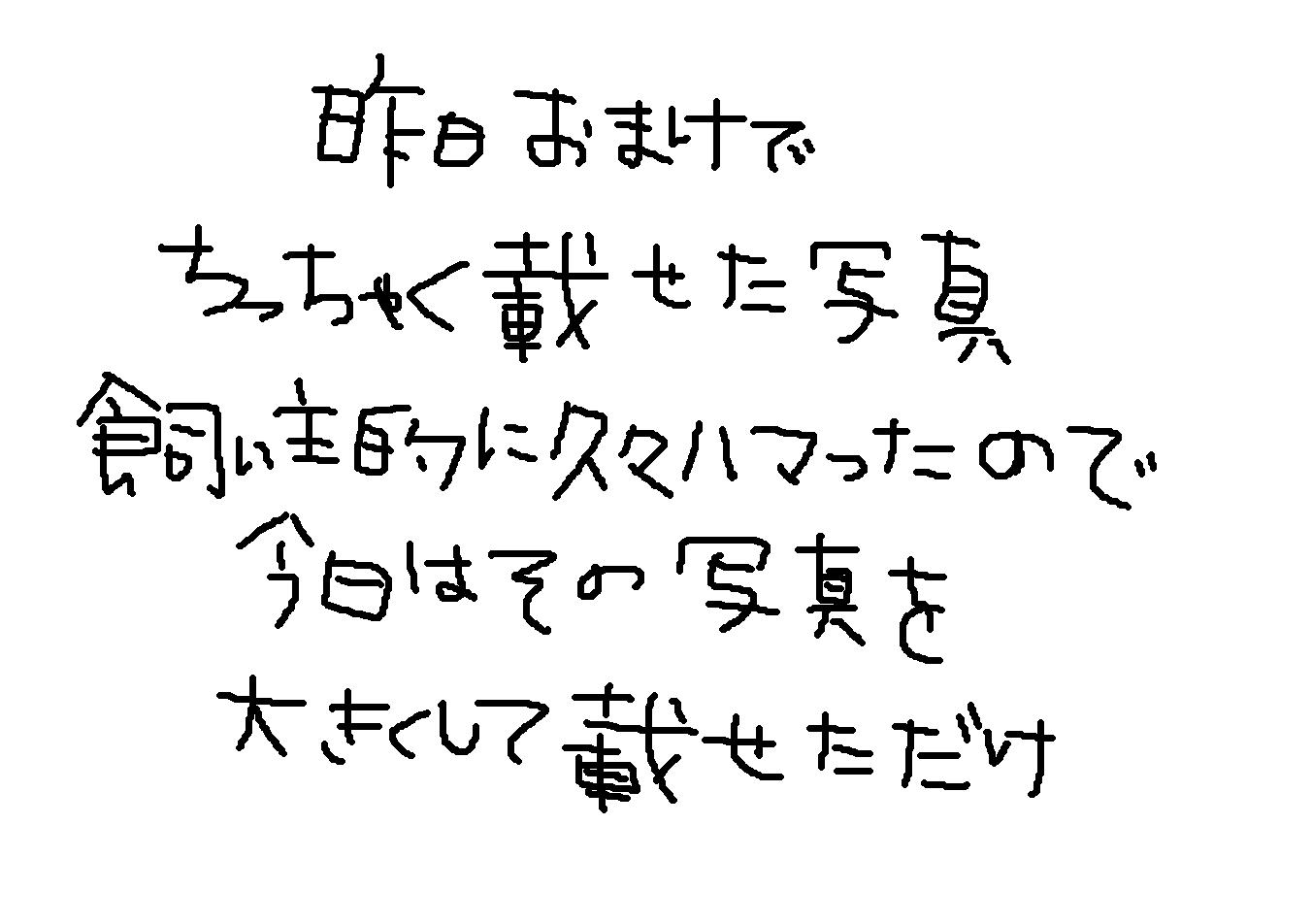 e0199784_1963048.jpg