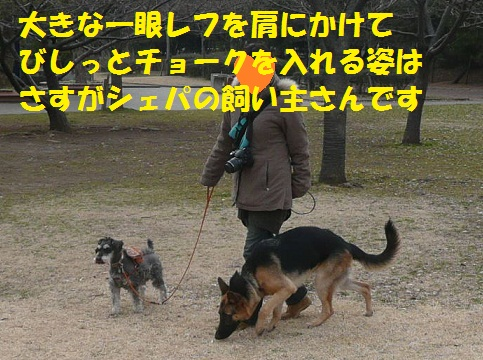 f0121712_1452052.jpg