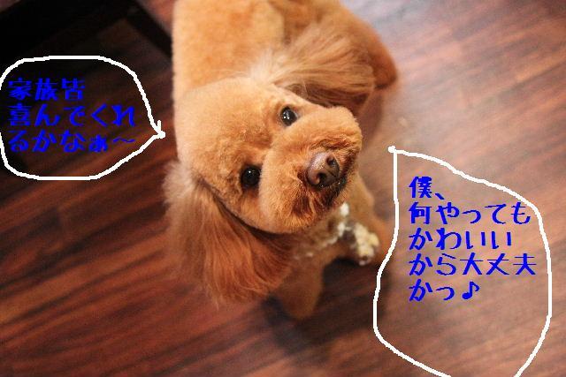 b0130018_175093.jpg