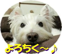 f0084422_255152.jpg